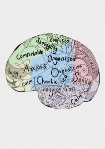 brains of entrepreneurs